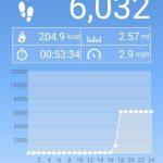 free walking app step tracker