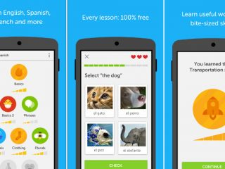 Best apps to learn foreign languages