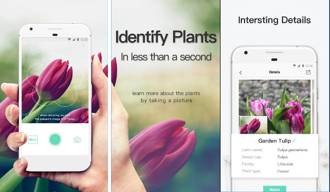 PictureThis - app to identify plants and trees